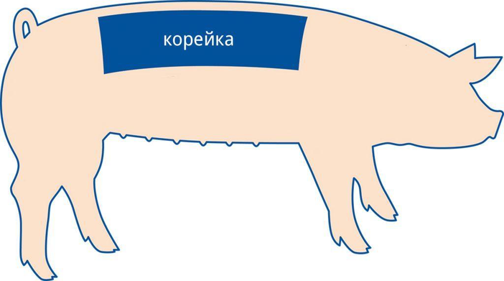 Как вкусно приготовить свиную корейку в домашних условиях