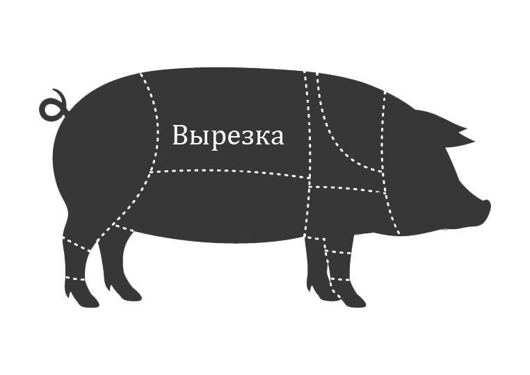 Вырезка свиная где находится