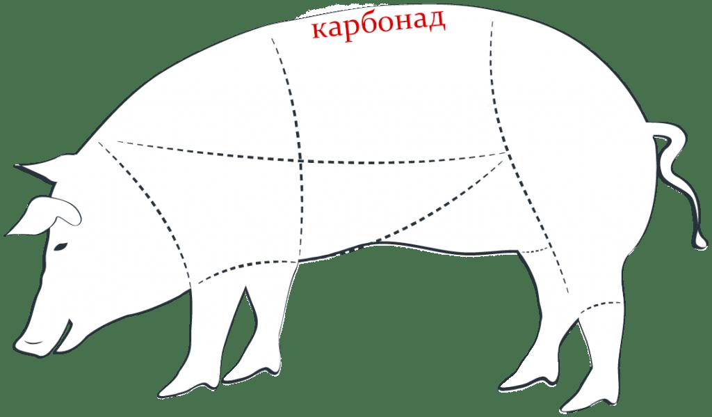 Где карбонад у свиньи