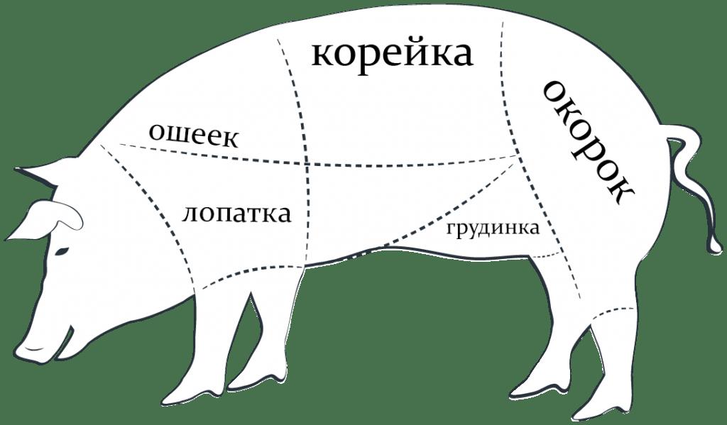 Части свиньи для азу