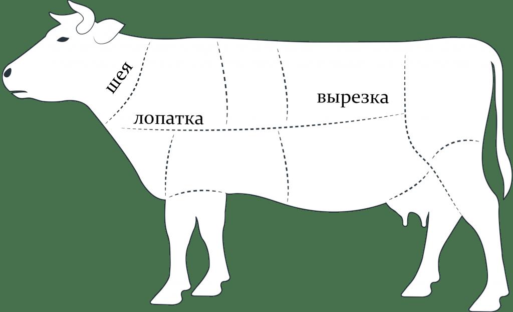 Какую часть говядины брать для азу