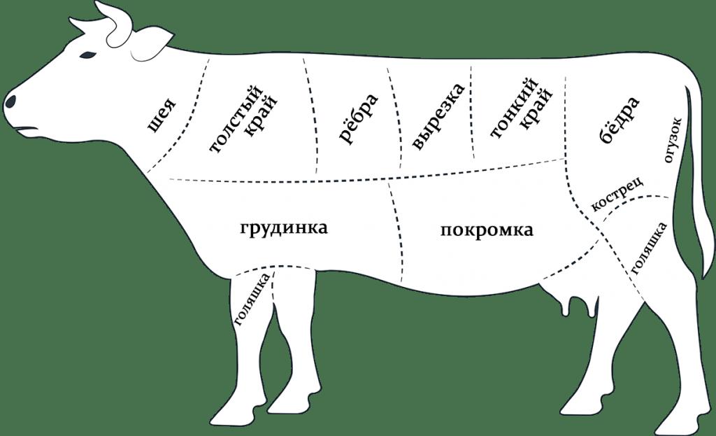 Части коровы