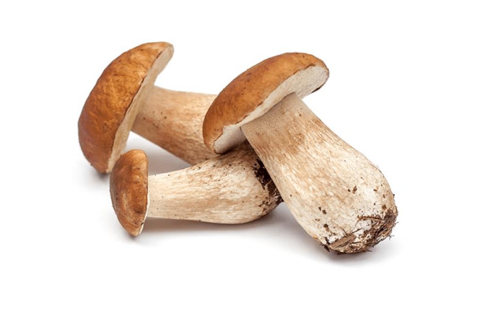 Белые грибы в меджимурский гуляш